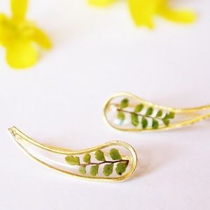 Pressed Fern Ear Climbers, Pressed Flower Earrings